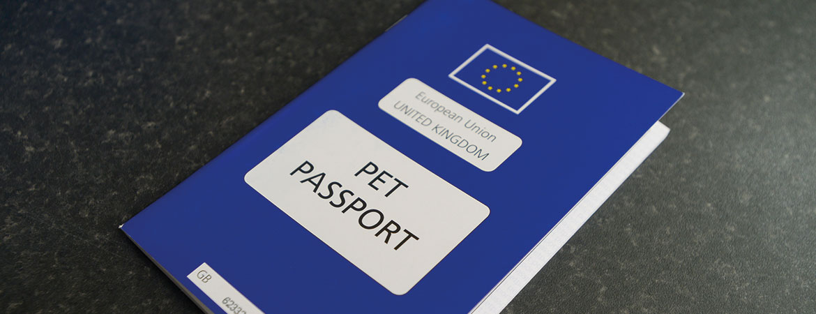 Pet Passports from Knotts Yard in Norfolk