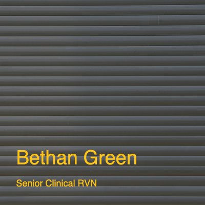 Knotts Yard Vets - Bethan Green