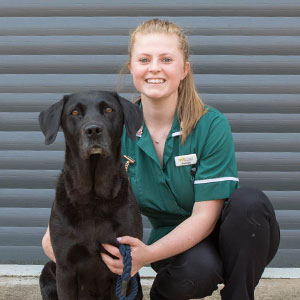 Knotts Yard Vets - Georgina Drew