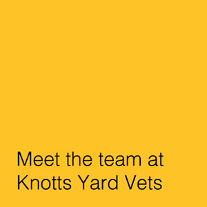 Knotts Yard Vets in Watton, Norfolk